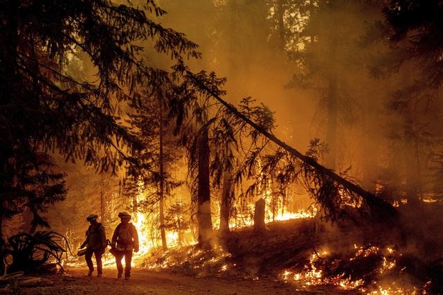 Cháy rừng lan nhanh ở California, hàng nghìn người phải sơ tán - Ảnh 6.