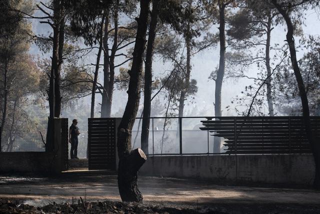 Cháy rừng ở Hy Lạp bước sang ngày thứ 3, địa điểm tổ chức Thế vận hội cổ đại được bảo toàn - Ảnh 2.