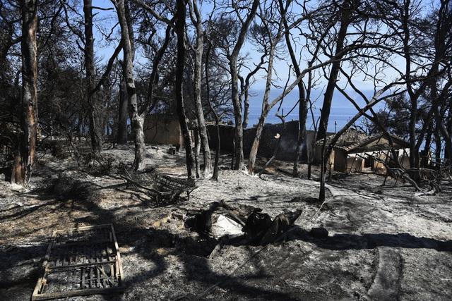 Cháy rừng ở Hy Lạp bước sang ngày thứ 3, địa điểm tổ chức Thế vận hội cổ đại được bảo toàn - Ảnh 9.