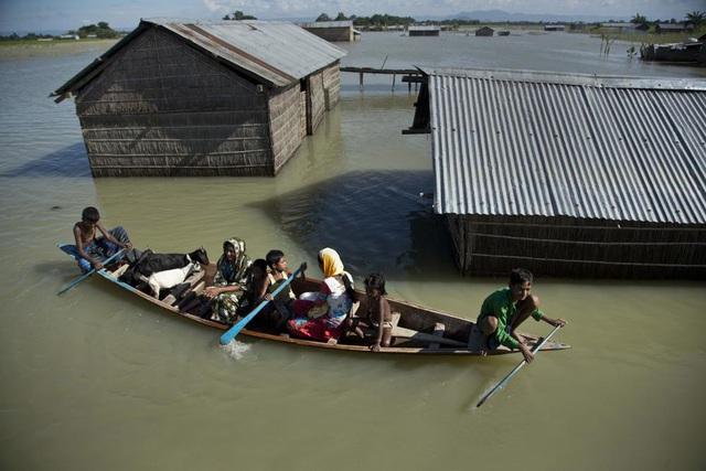"""Biến đổi khí hậu: Cảnh báo kinh hoàng về """"10 triệu người tử vong"""" nếu thế giới không hành động - Ảnh 1."""