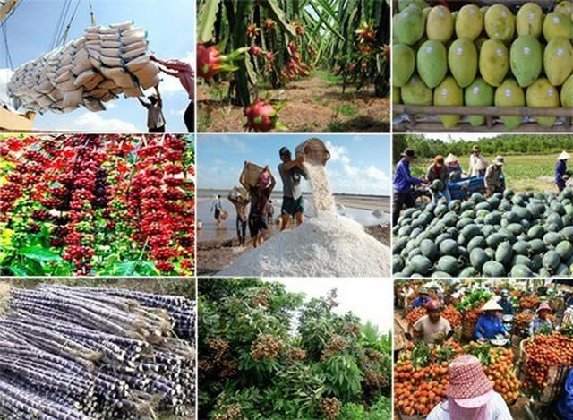 Cần thay đổi cách thức tiêu thụ nông sản - Ảnh 1.