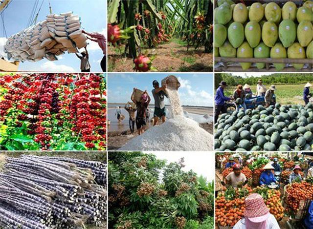 Thủ tướng Chính phủ chỉ đạo thúc đẩy sản xuất, lưu thông, xuất khẩu nông sản - Ảnh 4.