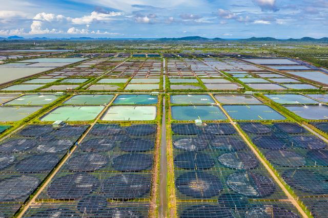 Đổi mới công nghệ thúc đẩy tăng trưởng kinh tế tại Việt Nam - Ảnh 2.