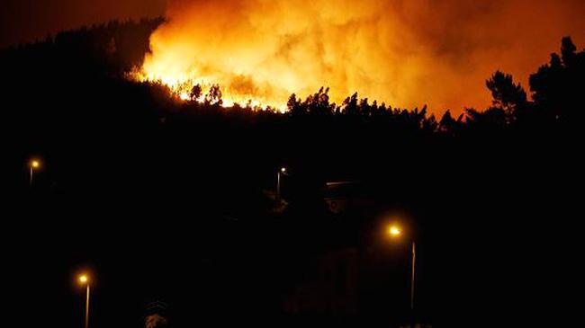 Cháy rừng tại Bolivia khiến hàng chục người thương vong - ảnh 1