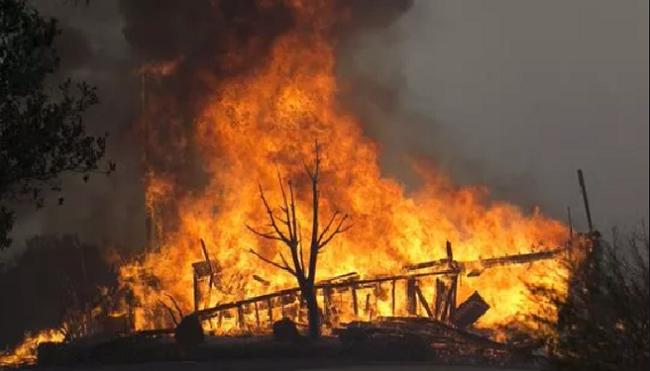 Mỹ: 26 người thiệt mạng trong vụ cháy rừng tại California - ảnh 1