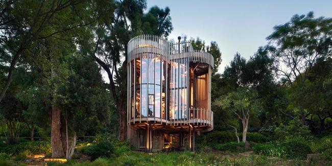 Nhà cây ấn tượng ở Nam Phi làm du khách mê mệt - ảnh 9