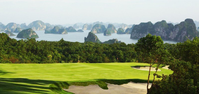 (Photo: baoquangninh.com.vn)
