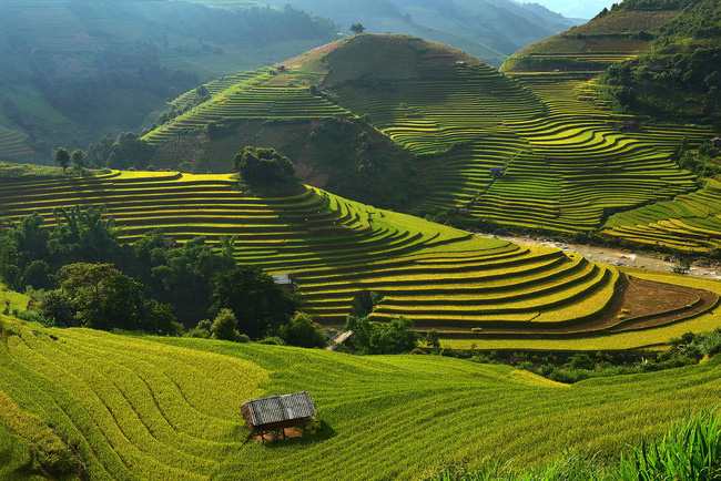 Rice terraces in Mu Cang Chai(Photo: placeaholic.com)