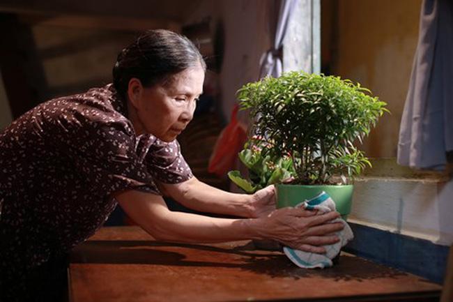 t4 1493861812547 - Tổng Hợp Link Tải Phim Việt Nam Chiếu Rạp Hay Nhất