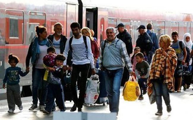 Số người di cư trên toàn cầu cao kỷ lục - ảnh 2