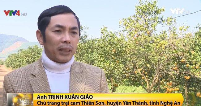 Trở thành tỷ phú nhờ trồng cam xã Đoài - ảnh 1