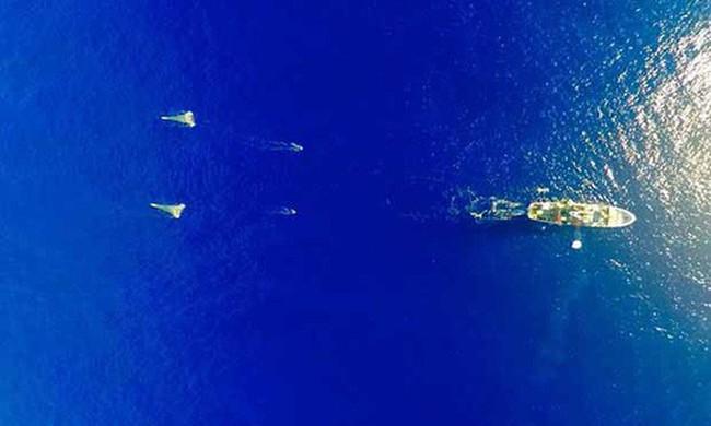 Đảo rác nổi lớn gấp ba lần nước Pháp giữa Thái Bình Dương - ảnh 2