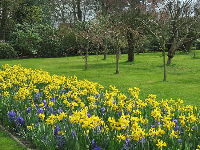 Ngắm cảnh đẹp như tranh vẽ tại Bỉ vào tháng 4 - ảnh 16