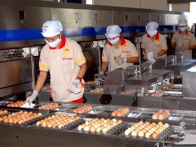 Bộ Công Thương: 11 năm qua chưa có DN nào nhập khẩu trứng gia cầm - ảnh 2