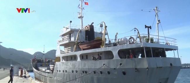Đưa 31 ngư dân gặp nạn vào bờ an toàn - ảnh 2