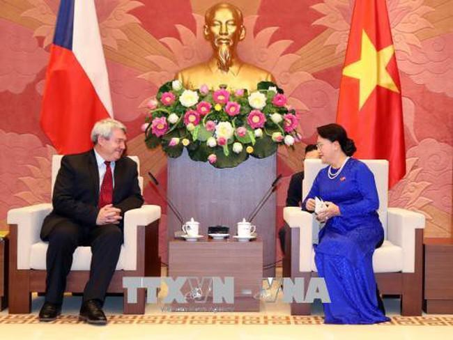 Việt Nam luôn coi trọng phát triển quan hệ với Czech - ảnh 1