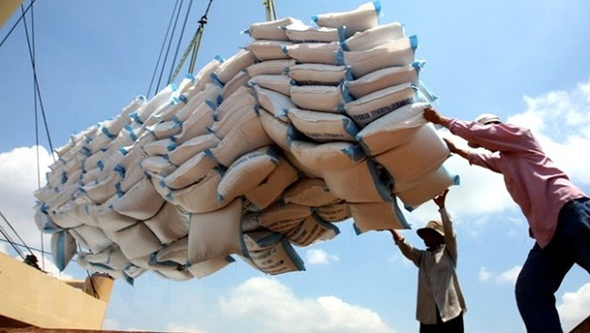 Vietnam exports 5.2 million tonnes of rice worth US$2.6 billion in the first ten months of this year. (Photo: VNA)