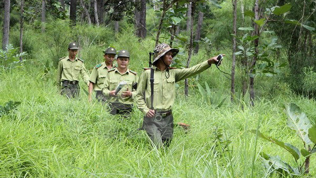 Vietnamese forest rangers on a patrol (Photo: VNA)