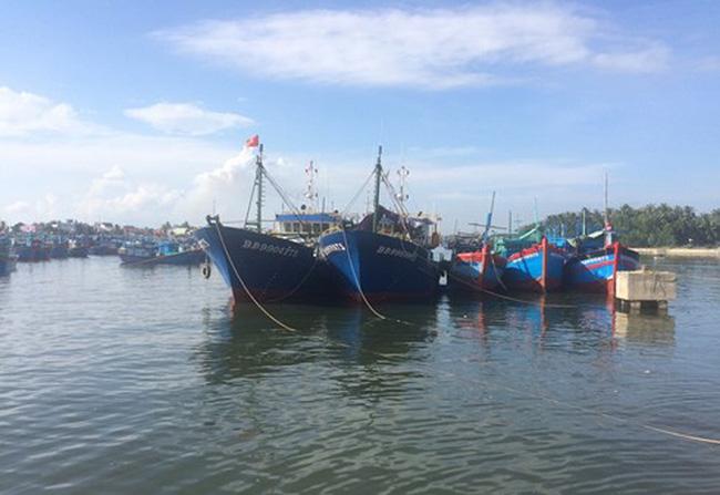 Bình Định: Ngư dân chưa đạt được thỏa thuận đền bù tàu cá 67 - ảnh 2