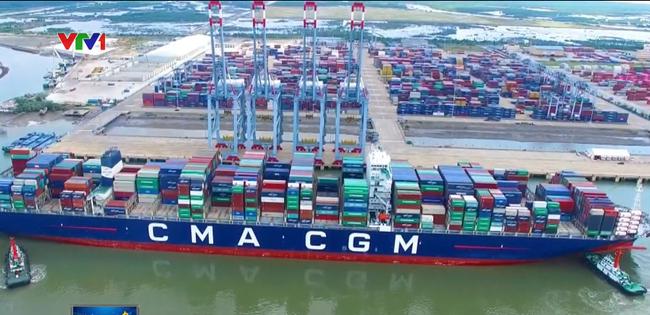 Chi phí vận tải biển sẽ tăng từ năm 2020 - ảnh 2