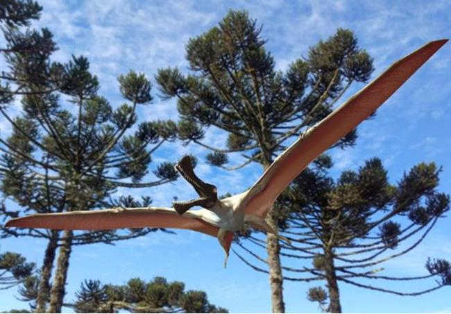 Phát hiện hóa thạch khủng long 96 triệu năm trước tại Australia - ảnh 1