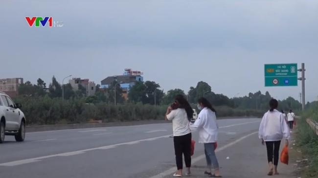 Băng qua cao tốc, 2 nữ công nhân bị ô tô tông chết, 1 người bị thương - ảnh 2