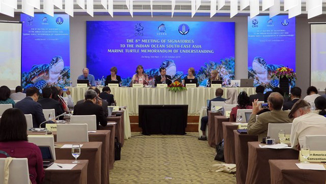 The 8th Meeting of Signatories to The Indian Ocean - Southeast Asia (IOSEA) Marine Turtle Memorandum of Understanding in Da Nang city on October 21. (Photo: VNA)