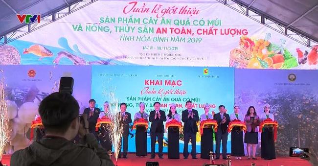 Quảng bá nông sản an toàn Hòa Bình tại Hà Nội - ảnh 1