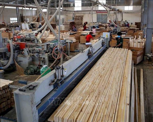 Tạm ngừng kinh doanh tạm nhập tái xuất gỗ dán sang Hoa Kỳ - ảnh 1