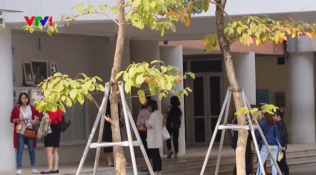 Hôm nay (18/11), bắt đầu chấm thi tuyển viên chức giáo viên Hà Nội - ảnh 2