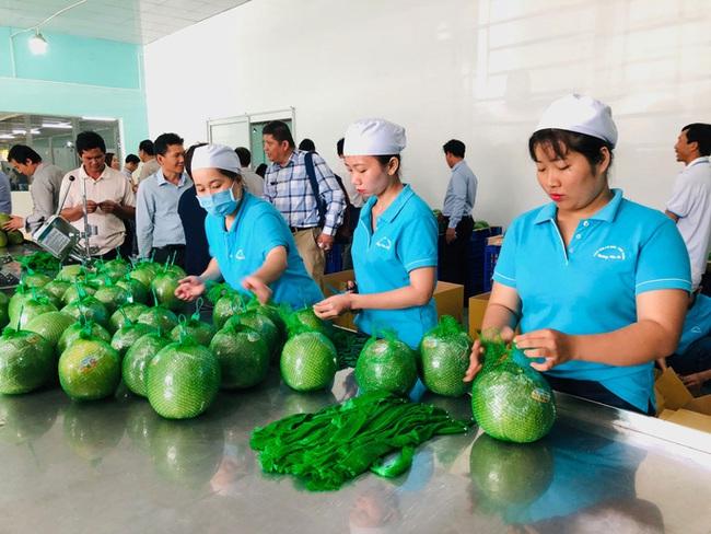 Tuần lễ hàng Việt Nam tại Thái Lan năm 2019 - ảnh 2