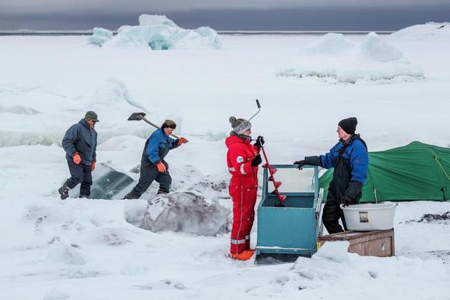 Greenland và vai trò trong việc dự đoán những thay đổi khí hậu của Trái Đất - ảnh 5