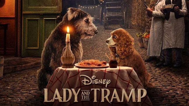 """Vượt qua """"The Lion King"""", """"Lady and the Tramp"""" là phim remake hay nhất của Disney năm 2019 - ảnh 3"""
