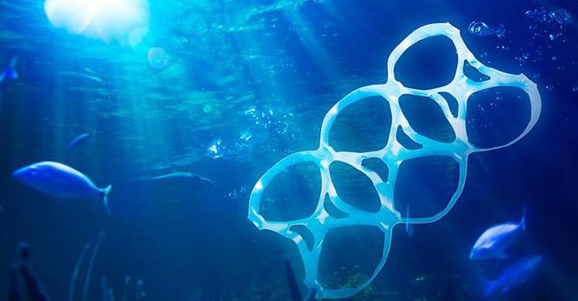 Dọn rác dưới biển Aegean - ảnh 1