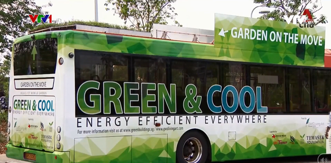 Khu vườn xanh trên nóc xe bus - ảnh 2