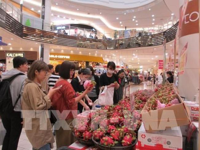 Japanese consumers select to buy Vietnamese dragon fruits (Photo: VNA)