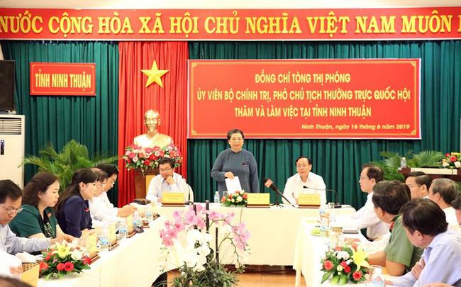 Ninh Thuận có nhiều phát triển vượt bậc - ảnh 1
