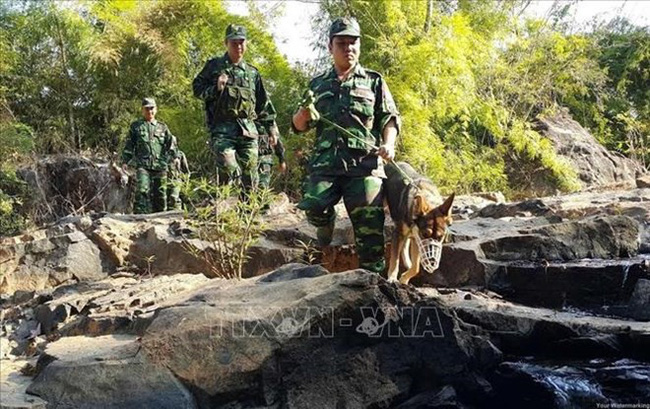 Vietnam's border force in a border patrol session (Source: VNA)