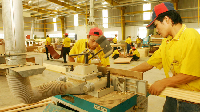 Strong wood exports put Vietnam on the global map