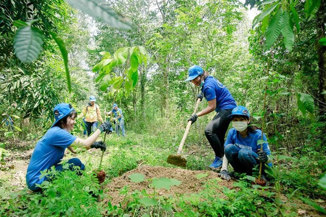A programme to restore  Dong Nai World Biosphere Reserve creates an abundant food source for elephants and other wild species. (Photo courtesy of the Gaia Read)
