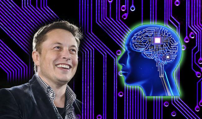 Elon Musk muốn cấy chip vào não người và kết nối với smartphone - ảnh 4