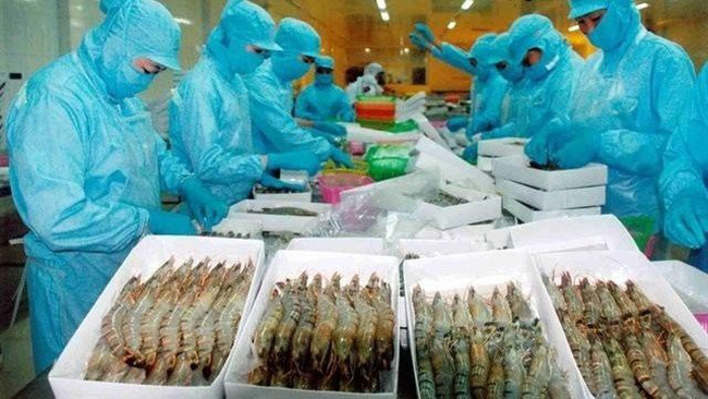 Processing shrimp for export. Vietnam met goals of export value growth at 7.5% in 2019.(source: thegioihoinhap.vn)