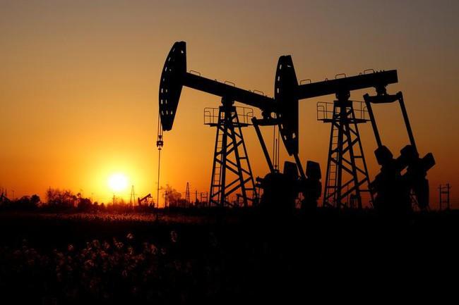 OPEC hạ dự báo nhu cầu dầu năm 2020, cảnh báo nguy cơ dư cung - ảnh 1