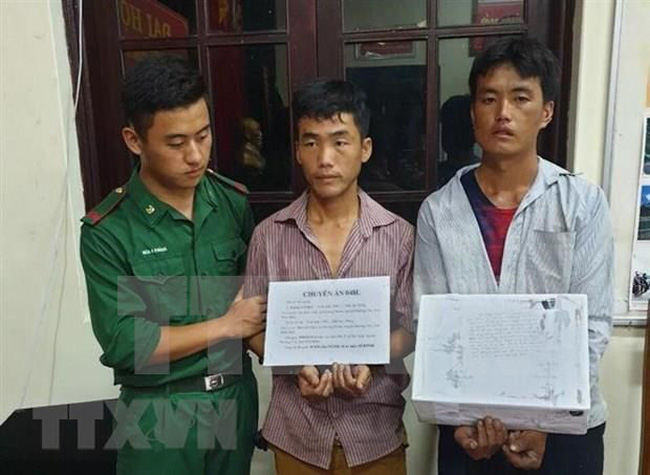 Giang A Chinh and Ly A Lu are arrested for carrying 20,000 meth pills in Dien Bien. (Photo: VNA)