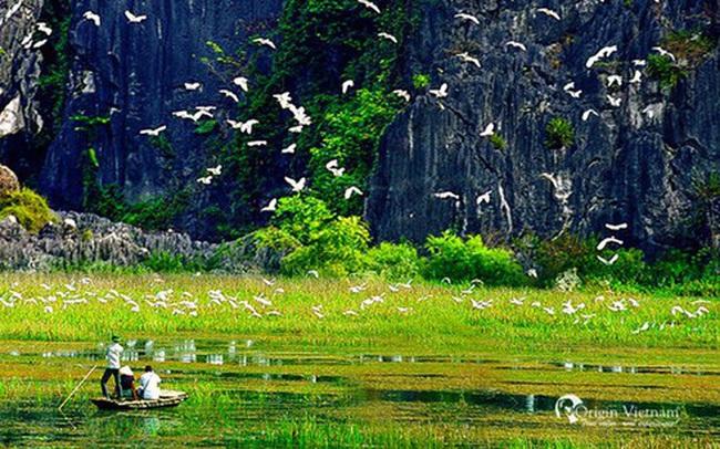 Illustrative image (Photo: originvietnam)