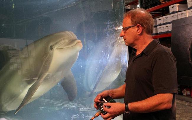 """Thủy cung trong tương lai có thể sẽ chỉ còn """"cá heo robot"""" - ảnh 3"""