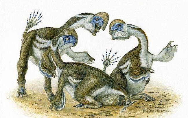 """Phát hiện hóa thạch khủng long """"lai vẹt"""" kỳ lạ - ảnh 3"""