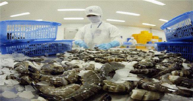 Thủy sản Minh Phú kháng cáo kết luận của Hải quan Hoa Kỳ - ảnh 1