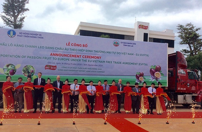 Delegates cut the ribbon to launch the export of the first tonnes of Vietnam-grown passion fruit to the EU under the EVFTA on September 16.