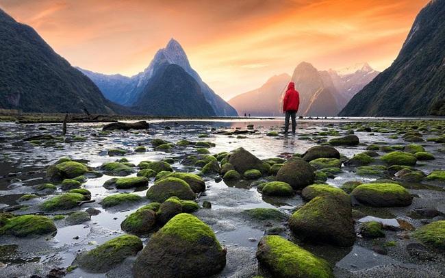 New Zealand chiếm ngôi vương hộ chiếu quyền lực nhất thế giới - ảnh 2